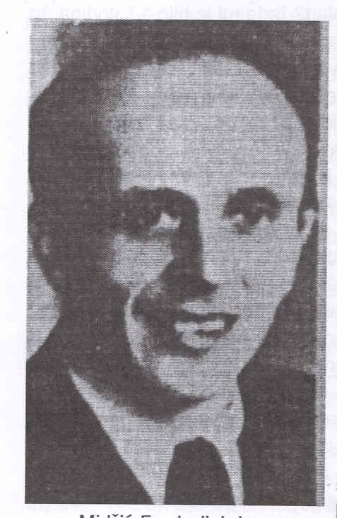 Ing. Fuad Midzic