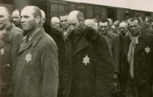 313 jevreja, preživjele žrtve Holokausta i njihovi potomci osuđuju napad na Gazu