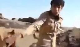 Pogledajte kako su Amerikanci jučer masakrirali iračku vojsku: Kažu, greškom ih pogodili!