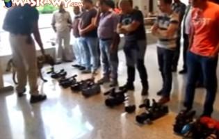 Američke kabadahije i arapske kukavice: Sa psima na muslimanske novinare