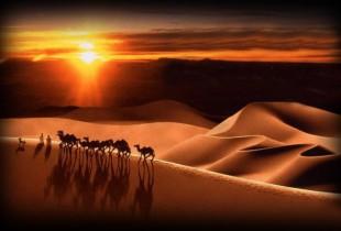 Hidžra – put u civilizaciju