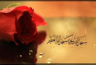 Osam situacija i stavova žena muslimanki koji su obilježili islamsku povijest