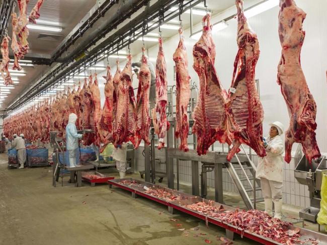 Turci nam oprostili lopovluke i prevare: Osiguran izvoz 10.000 tona mesa u Tursku u 2016. godini
