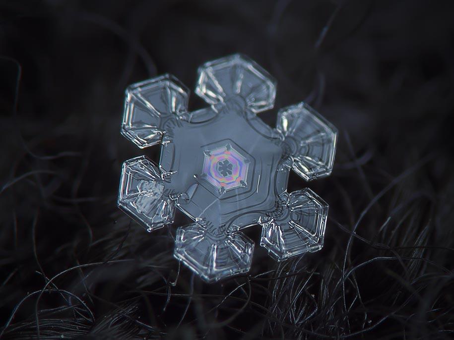 snowflake-closeup-diy-setup-alexey-kljatov-11