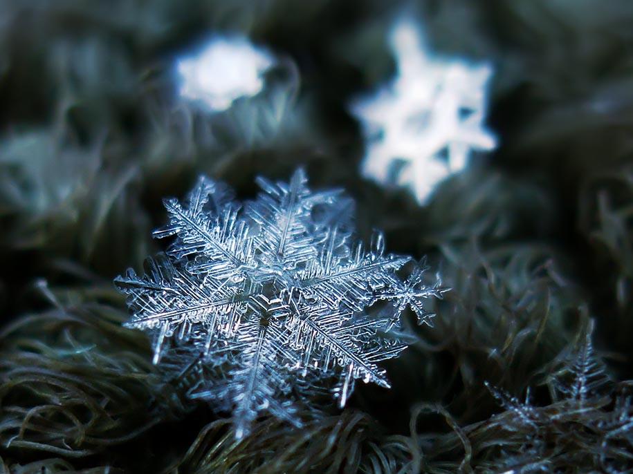 snowflake-closeup-diy-setup-alexey-kljatov-13