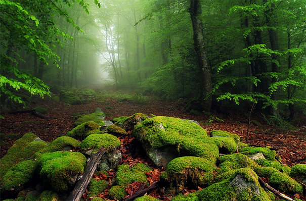 landscape-photography-12